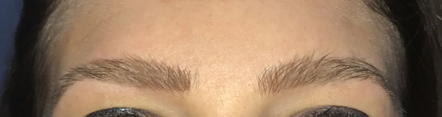 Permanent cosmetic solutions   Brows